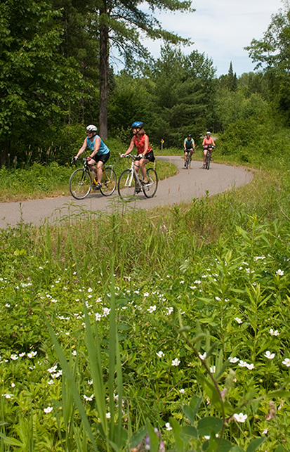 Family enjoys bike trail in wooded area