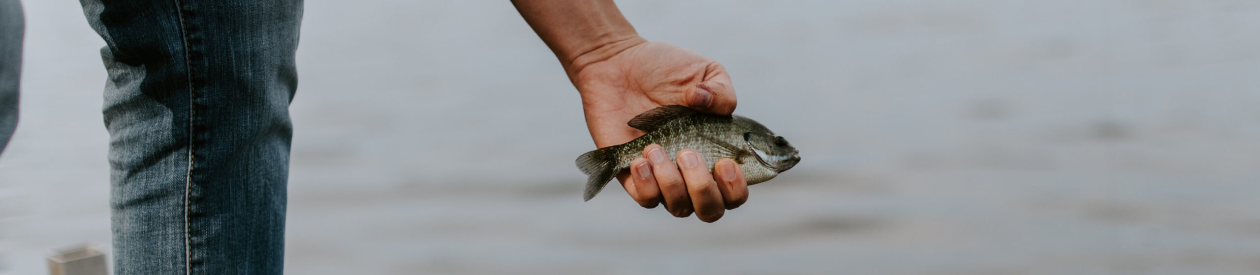 someone holding a fish