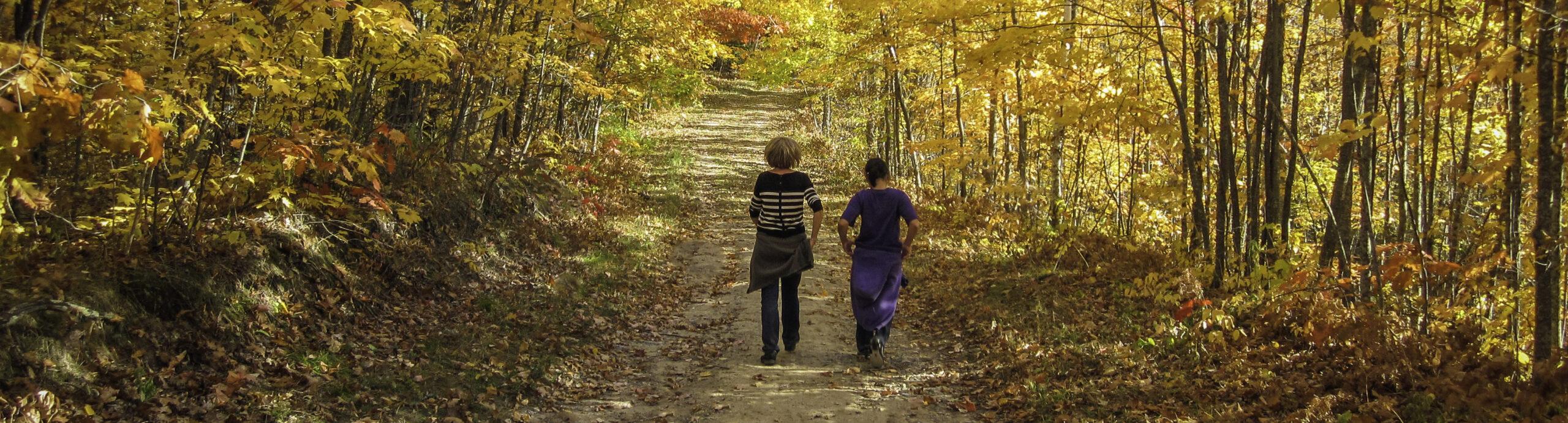 Fall Hikes near Leech Lake